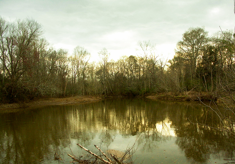 Patsiliga Creek is a coastal waterway that originates in and runs through much of Crenshaw County.