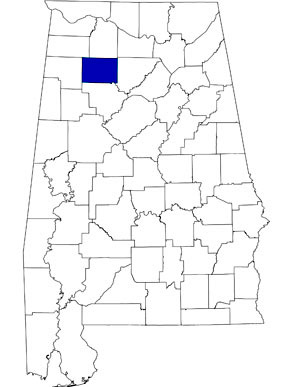 Image Result For Map Of Cullman