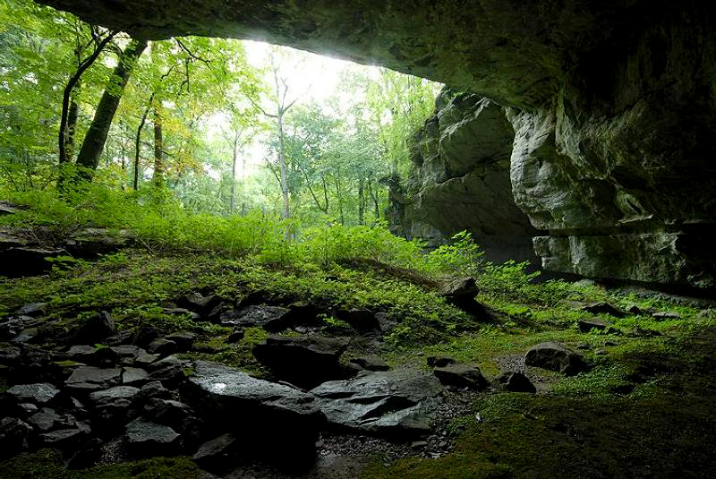 An interior view of Russell Cave in Jackson County.
